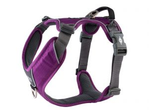Dog Copenhagen szelki Comfort Walk Pro™ - Purple Passion ( fiolet )