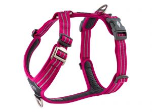 Comfort Walk Air™  szelki (M/L/XL) Wild Rose ( róż ) Dog Copenhagen